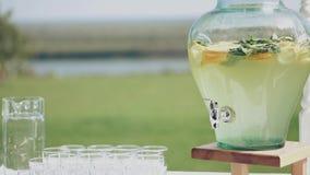 Χυμός με τα φρούτα σε ένα μεγάλο κύπελλο, υπαίθρια για ένα πικ-νίκ Εδώ κοντά είναι γυαλιά απόθεμα βίντεο