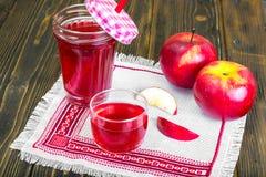 Χυμός της Apple από τα φρέσκα ώριμα μήλα Στοκ φωτογραφία με δικαίωμα ελεύθερης χρήσης