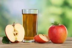 Χυμός της Apple και κόκκινα μήλα το καλοκαίρι Στοκ εικόνα με δικαίωμα ελεύθερης χρήσης