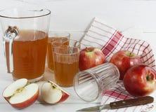 Χυμός της Apple και κόκκινα μήλα Στοκ εικόνες με δικαίωμα ελεύθερης χρήσης