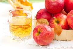 Χυμός της Apple και κόκκινα μήλα Στοκ φωτογραφίες με δικαίωμα ελεύθερης χρήσης