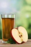 Χυμός της Apple και τεμαχισμένα μήλα το φθινόπωρο Στοκ Φωτογραφίες