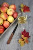 Χυμός της Apple, μήλα και φύλλα φθινοπώρου Στοκ εικόνα με δικαίωμα ελεύθερης χρήσης