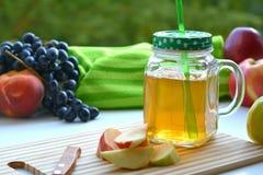 Χυμός της Apple σε μια κούπα και τα φρούτα Στοκ Εικόνα