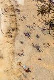 Χυτές άνθρωποι σκιές στην όμορφη παραλία Arrecife, Lanzarote Στοκ φωτογραφία με δικαίωμα ελεύθερης χρήσης