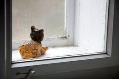 Χωμάτινη γάτα Στοκ εικόνες με δικαίωμα ελεύθερης χρήσης
