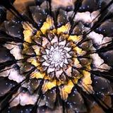 Χωματένιο Fractal Mandala λουλούδι Στοκ Εικόνες