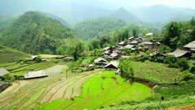 Χωριά Akha σε Sapa, Βιετνάμ, θαυμάσιο πεζούλι ρυζιού φιλμ μικρού μήκους