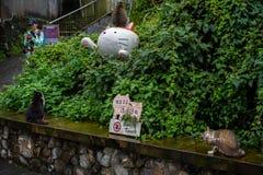Χωριό γατών Houtong Διάσημος πληθυσμός γατών της Ταϊβάν στοκ εικόνες