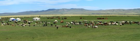 Χωριό Μογγολία Yurt Στοκ φωτογραφίες με δικαίωμα ελεύθερης χρήσης