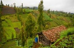 Χωριό ορεινών περιοχών στην Ιάβα, Ινδονησία Στοκ Εικόνες
