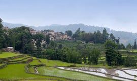 Χωριό πέρα από τους terraced τομείς ρυζιού σε Yunnan, Κίνα Στοκ φωτογραφία με δικαίωμα ελεύθερης χρήσης