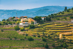 Χωριό στην κοιλάδα Douro, Πορτογαλία στοκ εικόνα με δικαίωμα ελεύθερης χρήσης