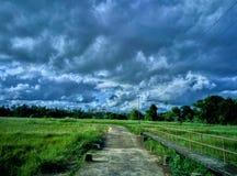 Χωριό στη Σρι Λάνκα Στοκ Εικόνες