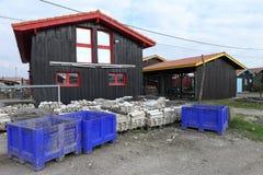 Χωριό στρειδιών στον κόλπο του Αρκασόν, Γαλλία Στοκ Εικόνες