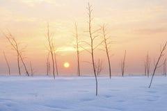 χωριό χιονιού Στοκ Εικόνα
