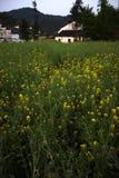 χωριό στοκ εικόνα