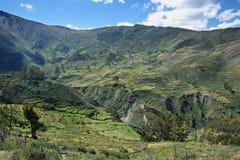 Χωριό Carania και των περιχώρων, Περού Στοκ φωτογραφία με δικαίωμα ελεύθερης χρήσης