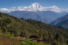 Χωριό Ghorepani ένα όμορφο πρωί, οδοιπορικό Annapurna, Pokhar Στοκ Εικόνες