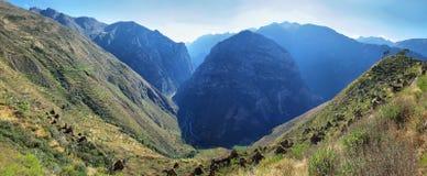 Χωριό Huaquis μέσα ούτε Yauyos Cochas, Περού Στοκ Εικόνα