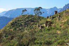 Χωριό Huaquis μέσα ούτε Yauyos Cochas, Περού Στοκ φωτογραφίες με δικαίωμα ελεύθερης χρήσης