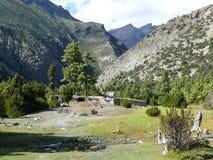 Χωριό Julu και δάσος πεύκων κοντά σε Ngawal, Νεπάλ Στοκ Εικόνες