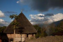 Χωριό tradtional Puu Ruteng, σπίτια χαρακτηριστικά για την περιοχή Manggarai σε Flores στοκ εικόνα