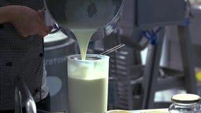 Χύνοντας γάλα εργαζομένων σε ένα εμπορευματοκιβώτιο για τη μετατροπή απόθεμα βίντεο