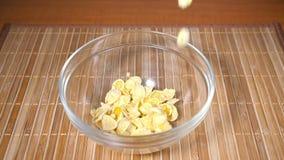 Χύνοντας δημητριακά σε ένα κύπελλο, σε αργή κίνηση απόθεμα βίντεο