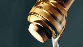 Χύνοντας μέλι ξύλινο dipper μελιού, σε αργή κίνηση πυροβολισμός κινηματογραφήσεων σε πρώτο πλάνο απόθεμα βίντεο