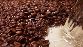Χύνοντας νερό στα ψημένα φασόλια καφέ, έξοχος σε αργή κίνηση πυροβολισμός απόθεμα βίντεο