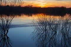 Χύσιμο άνοιξη στο ηλιοβασίλεμα στοκ εικόνες
