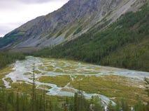 Χύσιμο ποταμών Kucherla Κοιλάδα ποταμών βουνών Μπλε ποταμός Kucherla στο εθνικό πάρκο Belukha, βουνά Altai, Σιβηρία, Ρωσία στοκ φωτογραφία με δικαίωμα ελεύθερης χρήσης