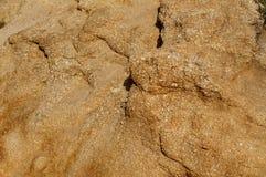 Χώμα ερήμων Στοκ Φωτογραφίες