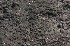 χώμα κήπων στοκ φωτογραφίες με δικαίωμα ελεύθερης χρήσης