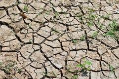 Χώμα ρωγμών στοκ φωτογραφίες