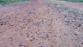 Χώμα στο έδαφος ως σύσταση και το υπόβαθρο στοκ εικόνες