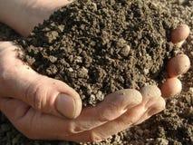 χώμα χουφτών Στοκ φωτογραφία με δικαίωμα ελεύθερης χρήσης