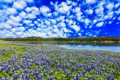 Χώρα λόφων του Τέξας στοκ εικόνες με δικαίωμα ελεύθερης χρήσης