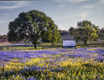 Χώρα λόφων του Τέξας στοκ φωτογραφίες