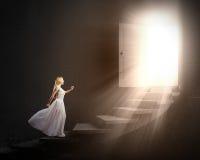χώρα των θαυμάτων της Alice Στοκ φωτογραφίες με δικαίωμα ελεύθερης χρήσης