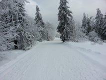 Χώρα χιονιού στοκ εικόνα με δικαίωμα ελεύθερης χρήσης