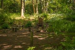 Χώρος συνάντησης του Glen νεράιδων με τις ξύλινες χαρασμένες έδρες και από την πρασινάδα του Forrest στη νεράιδα Glen Fullarton κ στοκ φωτογραφία