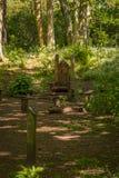 Χώρος συνάντησης του Glen νεράιδων με τις ξύλινες χαρασμένες έδρες και από την πρασινάδα του Forrest στη νεράιδα Glen Fullarton κ στοκ εικόνες
