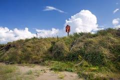 Χλοώδης ακροθαλασσιά και lifebuoy στοκ εικόνα με δικαίωμα ελεύθερης χρήσης