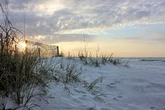 Χλοώδης παραλία στοκ εικόνες