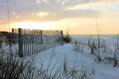 Χλοώδης παραλία Στοκ φωτογραφίες με δικαίωμα ελεύθερης χρήσης