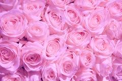 Χλωμιάστε - ρόδινα γαμήλια λουλούδια στοκ φωτογραφίες με δικαίωμα ελεύθερης χρήσης