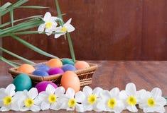 χλόη αυγών Πάσχας πράσινη διακόσμηση εορταστική Στοκ Εικόνα