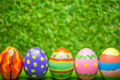 χλόη αυγών Πάσχας πράσινη Στοκ Εικόνες